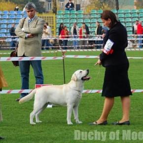 Nowy Dwór Mazowiecki - 12.10.2008