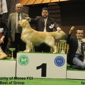 GŁOGÓW 2009 - udany początek sezonu 2009! GUCIO Młodzieżowym Championem Polski!