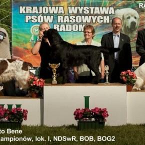 Radom 2009 - NADIA Zwycięzcą Rasy!